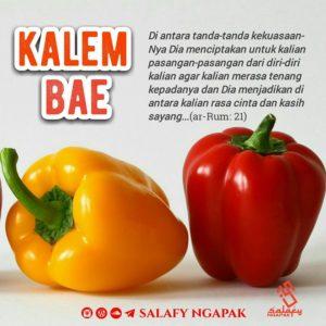 Poster Dakwah Salafy Ngapak 670