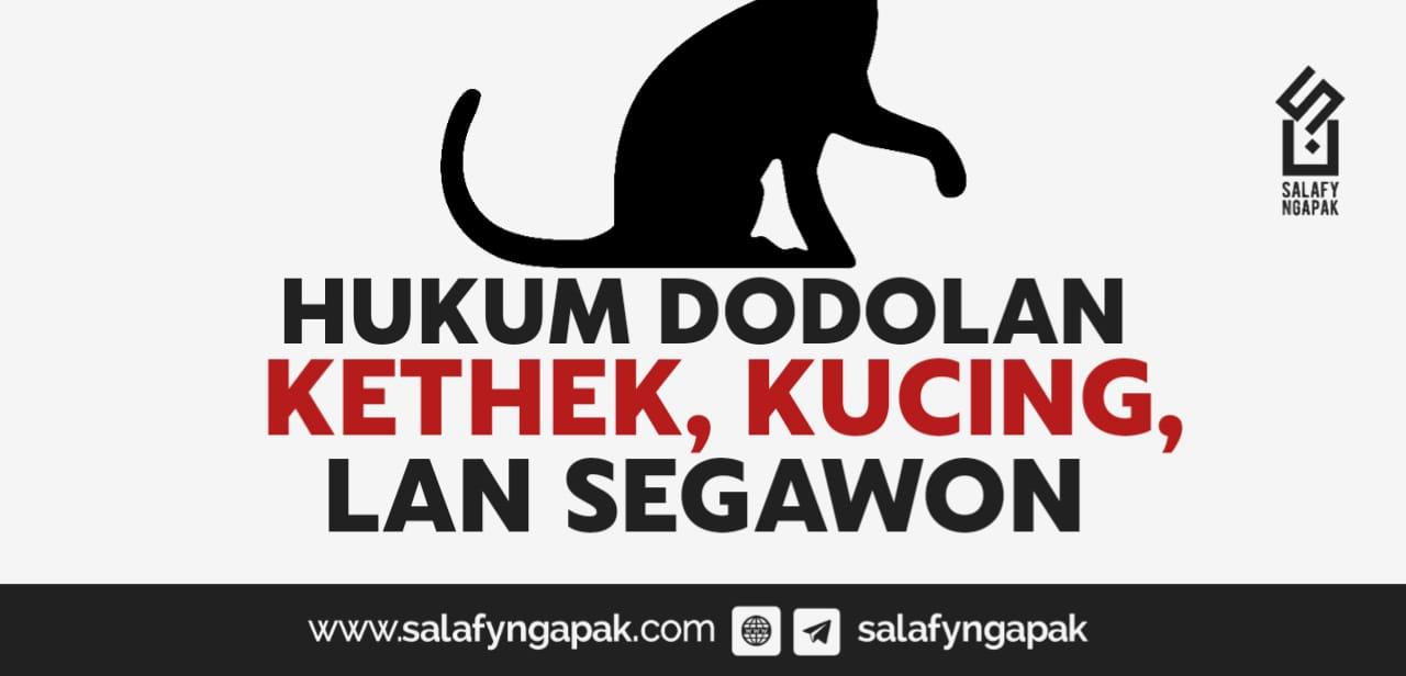 Hukume Dodolan Kethek, Kucing, Lan Segawon
